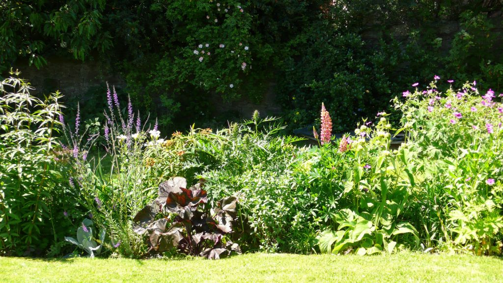 Garden Border View from the Bedroom